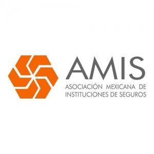 amis logo square